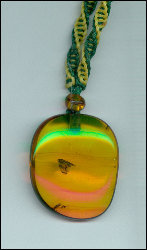 Chiapas Amber