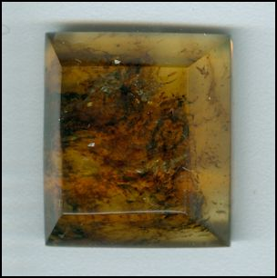 Faceted Dominican Republic Amber Ambar