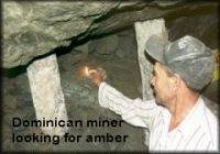 Amber Miner