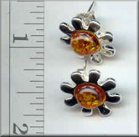 Baltic Amber Earrings Jewelry